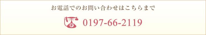 0197-66-2119